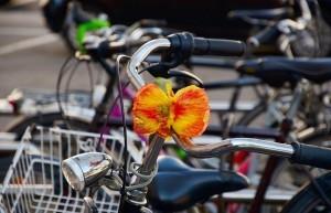 Do práce na kole: Ve Zlíně znají vítěze