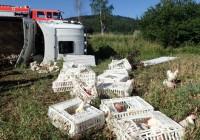 Hasiči zachraňovali na Krnovsku sedm hodin drůbež z polského kamionu                                        3.67/5(3)