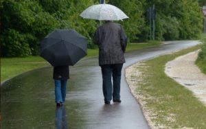 Vydatné deště ukončí zvýšené riziko vzniku požárů