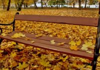 Dnes nastala podzimní rovnodennostDosud nehodnoceno.