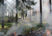 Český hydrometeorologický ústav vydal výstrahu na zvýšené riziko požárůDosud nehodnoceno.