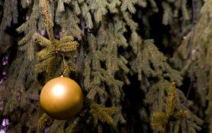Jaká je vlastně tradice vánočních stromků?