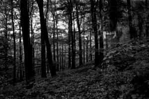 Průvodce tajemnem po Čechách – Tajemné Krušné hory 2. část