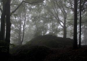 Průvodce tajemnem po Čechách – Tajemné Krušné hory