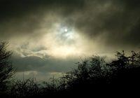 Hory lákají, ale jak se tam chovat?                                        5/5(1)