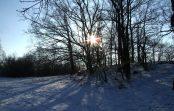 Podle astronomů nás velice brzy zastihne malá doba ledová. A to je velký problém