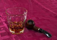 Rum – pití opředené legendami                                        5/5(2)