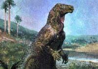 Holub a tyranosaurus jsou příbuzní                                        5/5(5)