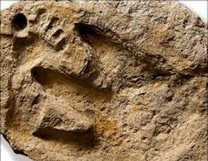 Zatajené archeologické objevy které by změnily vnímání světa a historie – stopy dinosaurů a lidí