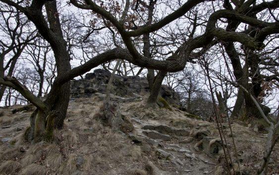 České Středohoří – Lovoš, dominanta dolního Polabí