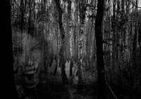 Hororová creepypasta na nedělní večer – Tajemství lesa                                        5/5(2)