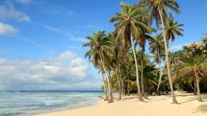 Jamajka – ostrov rumu, pirátů, reggae. Ale také pláží, krásných výhledů a panoramat