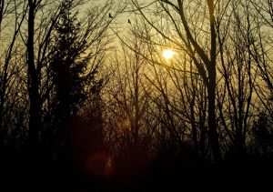 Koloběh roku – Blíží se Zimní slunovrat. Doba tajemných zvyků, kouzel ale i číhajícího Zla