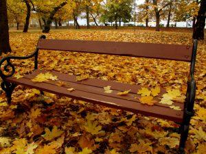 Podzim je krásný a nikoliv depresivní